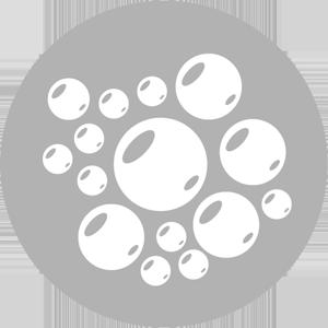 Ozonator (optional)